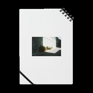 Shogo Hirokiのgreen Notes