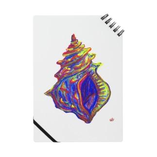 未来からきた貝殻 ノート