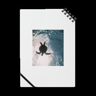 _O4muのウミガメ Notes