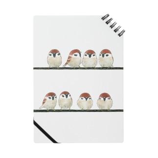 -SUZUME No.5- Bird call Notes