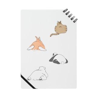 puriketu Notes