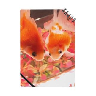 金魚手帳 Notes