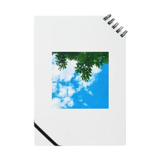 空と緑君 Notes