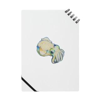 Dango-ika【fishing style】 Notes