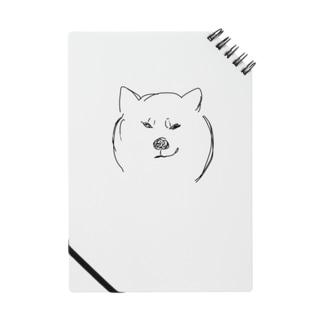 SHI☆BA Notes