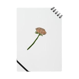 子のバラ Notes