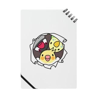 なかよしインコ【まめるりはことり】 Notes