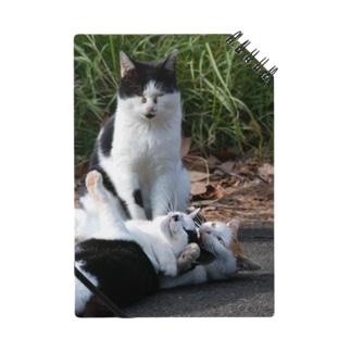 猫のチョークスリーパー ノート Notes