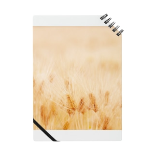 穀 Notes