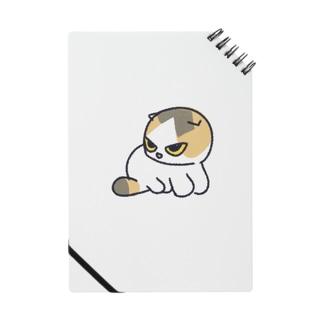 くるみちゃん First model Notes
