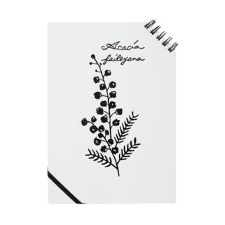 植物図鑑シリーズ…ミモザ Notes