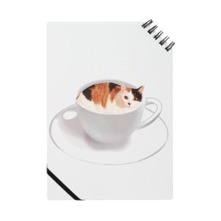 猫カフェラテ☕️おいしそうな いろをした ねこ. Notes