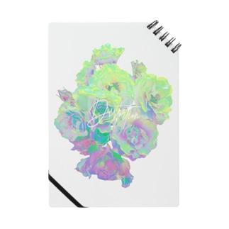 DSR / GREEN Notes