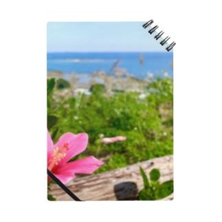 沖縄の花 Notes