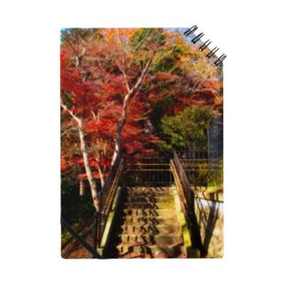 紅葉と階段 Notes