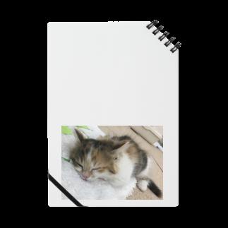 Kai410oooの猫のお昼寝 Notes