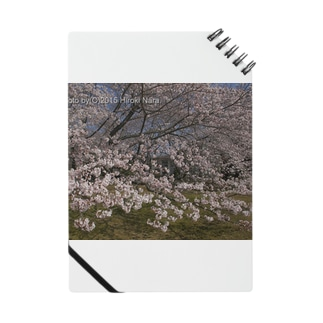 光景 sight0054 桜 2015_010 サクラ Notes