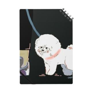 夜のビション Notebook