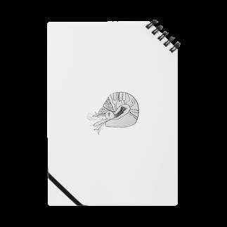 suneoのアンモナイト Notes