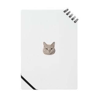 猫のチロルさん Notes