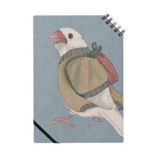イチゴ兄弟の文鳥(白文鳥) Notes