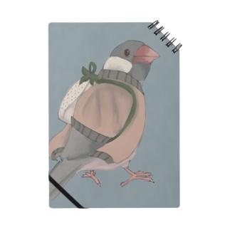 イチゴ兄弟の文鳥(シルバー文鳥) Notes