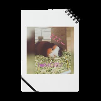 ユンユナのアイラブモルモット  Notes
