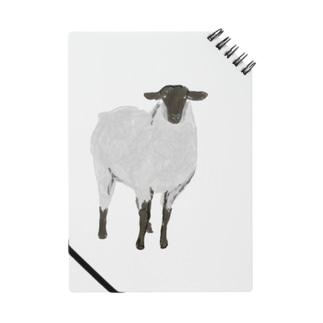 Calm sheep Notes
