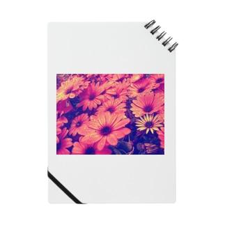 〰️➰わにゃ屋さん➰〰️の水滴つややくお花 Notes