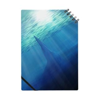 海の底より迫るもの。 Notes