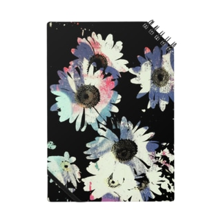 black daisy Notes