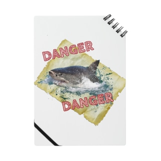 DANGER Notes
