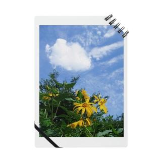 菊芋と空と雲 DATA_P_134 sky cloud Notes