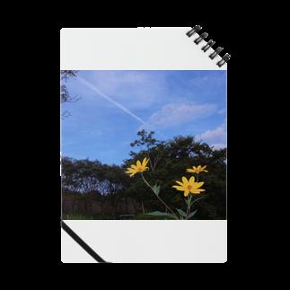 hiroki-naraの菊芋と樹木と空 DATA_P_140 tree sky Notes