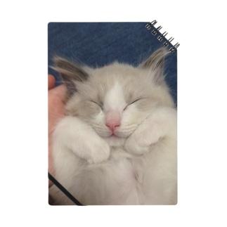 眠るねこ。ちびつみれ Notes