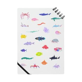 カラフル深海生物 Notes