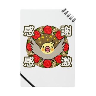 感謝感激オカメインコ【まめるりはことり】 Notes