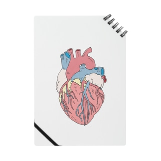 OGNdesignの心臓 内臓 Heart NO.18 Notes