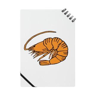海老 エビ shrimp NO.36 Notes
