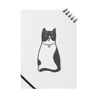 ハチワレ猫のフィガロ Notes