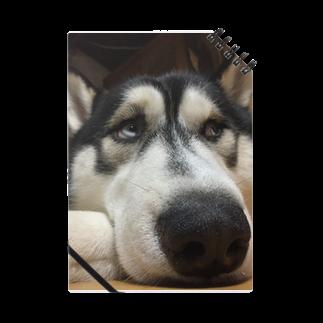 Dream Dog World 【夢犬】のたいくつじょ〜 Notes