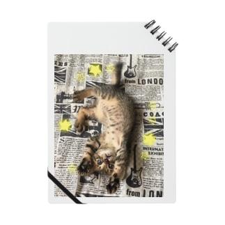 仔猫のtiro  Notes