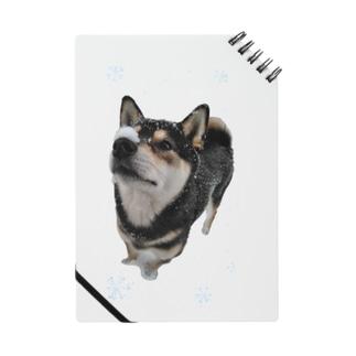 (黒柴)うちのわんこchanシリーズ ひんやり雪実写バージョン 黒柴 Notes