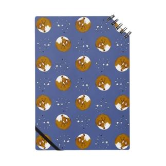 星とアンモナイト狐 Notes