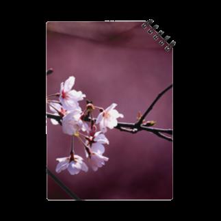 M.F.Photoの桜とあずき色 ノート