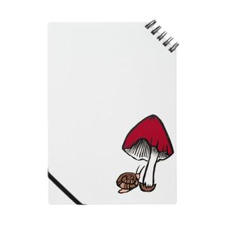 茸と蝸牛~彩~ Notes