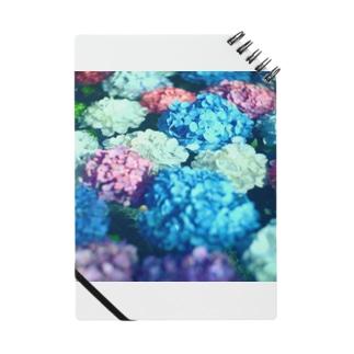 水と紫陽花 Notes