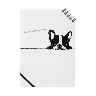 French Bulldog01 ノート