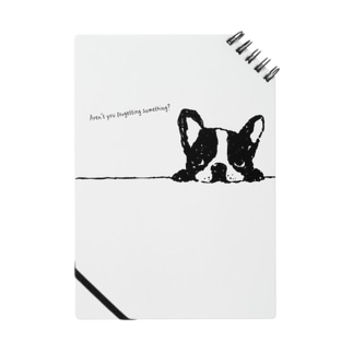 French Bulldog01 Notes