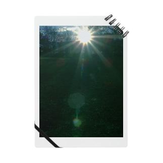 アマテラス ささやくもの DATA_P_149 太陽の輝き Notes